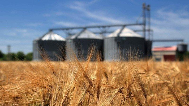 Через посуху влада Кримського півострова припиняє поставки зерна в Сирію