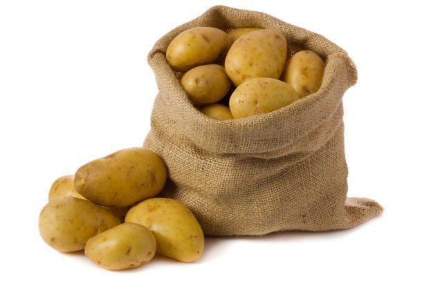 Скоро в продажі картопля стійка до PVY-вірусу