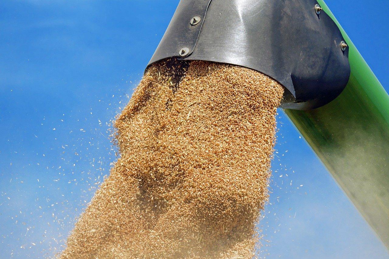 З України вже експортовано 40,6 млн тонн зерна