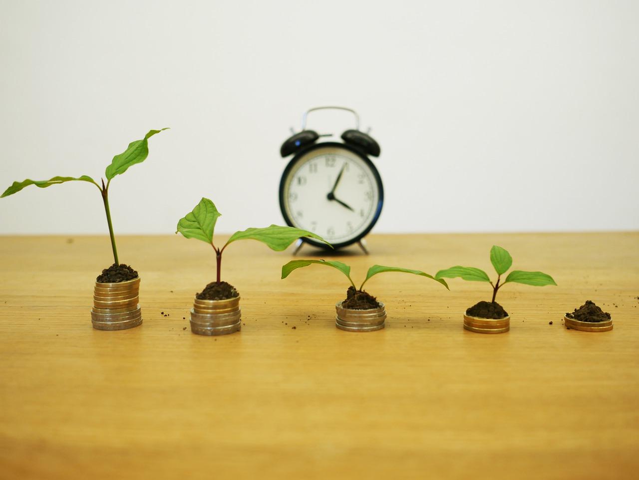 Хмельницькі агропідприємства залучили мільярд гривень капітальних інвестицій