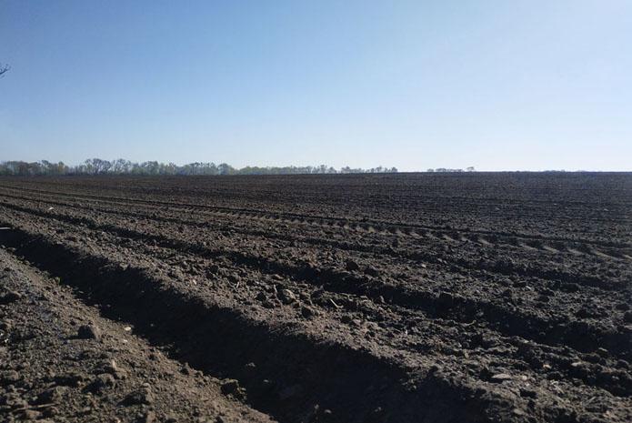 Весняна посівна кампанія в Україні завершена