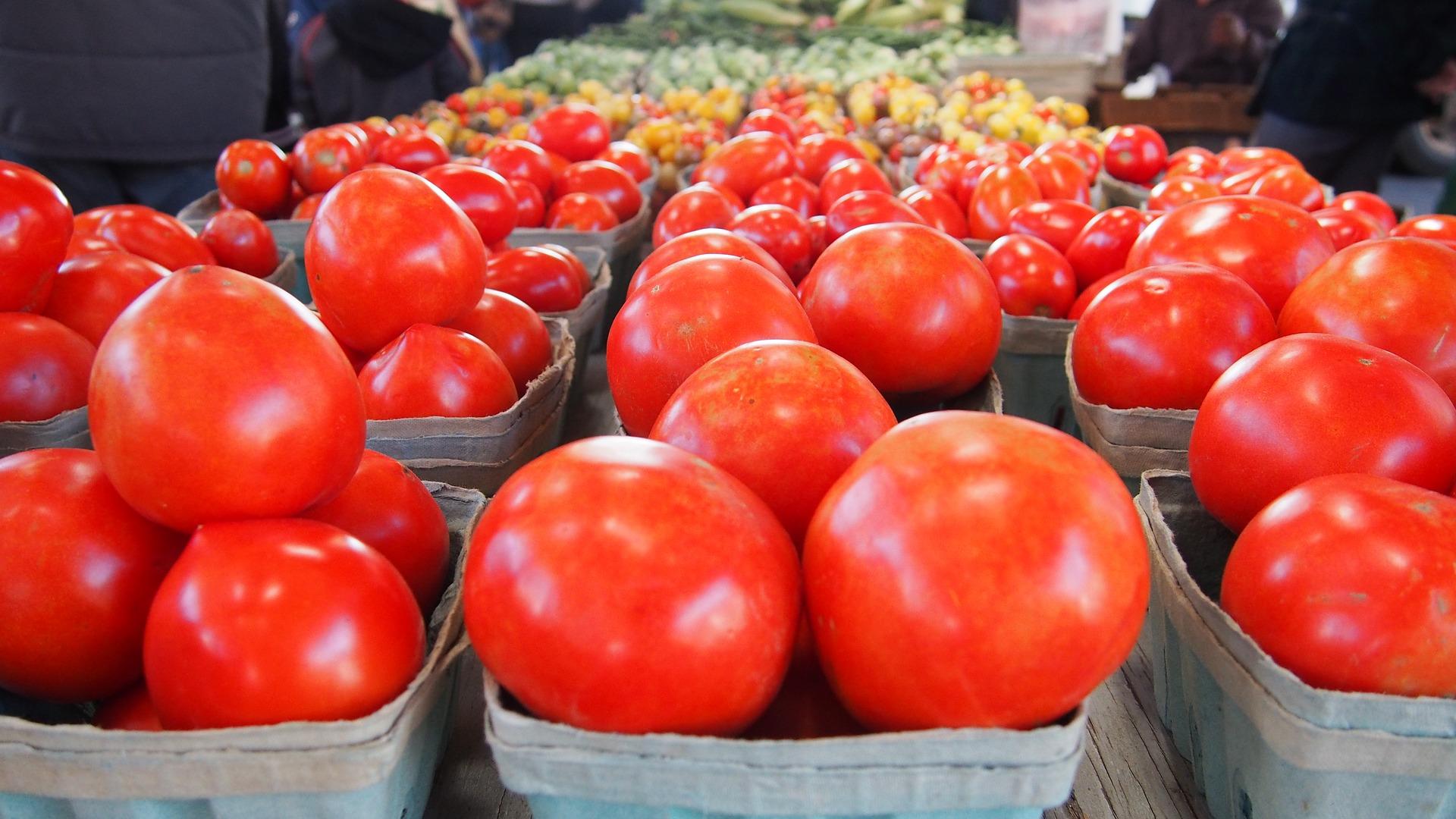 KWS планує розпочати випуск насіння томатів та листових овочів