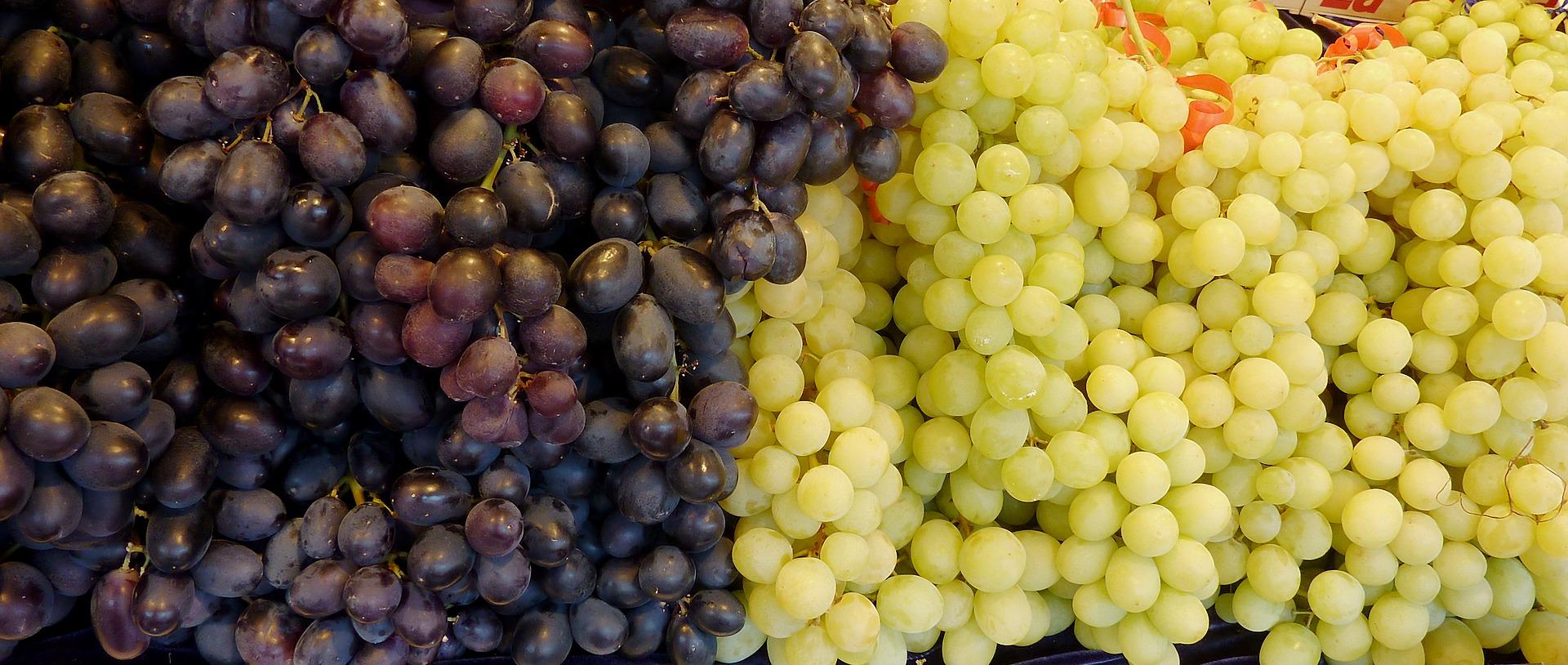 Зеленський підписав указ про запровадження в Україні Дня виноградаря і винороба