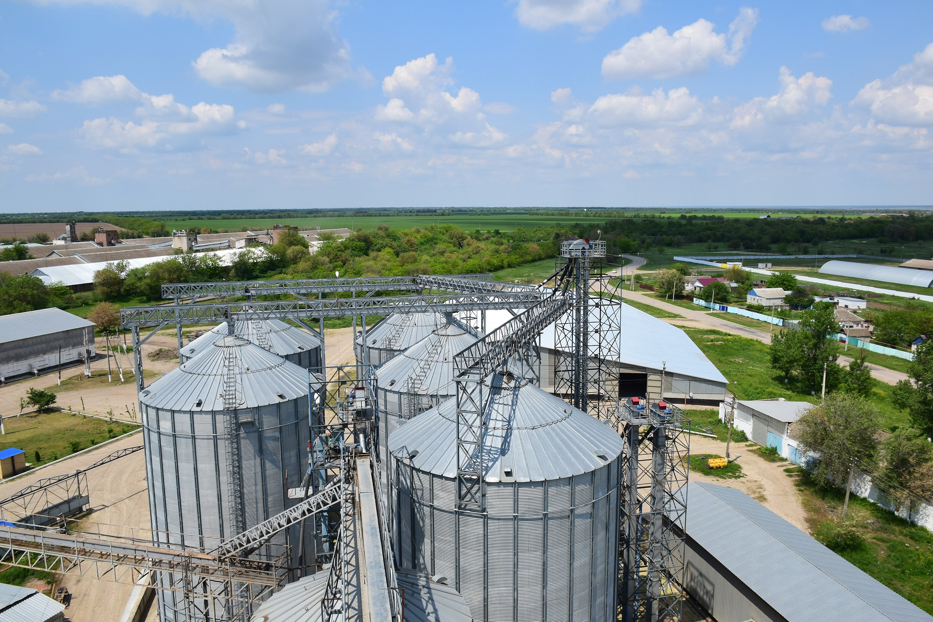 Елеватори «Новаагро» заготовили 200 тис. тонн зернових і олійних культур