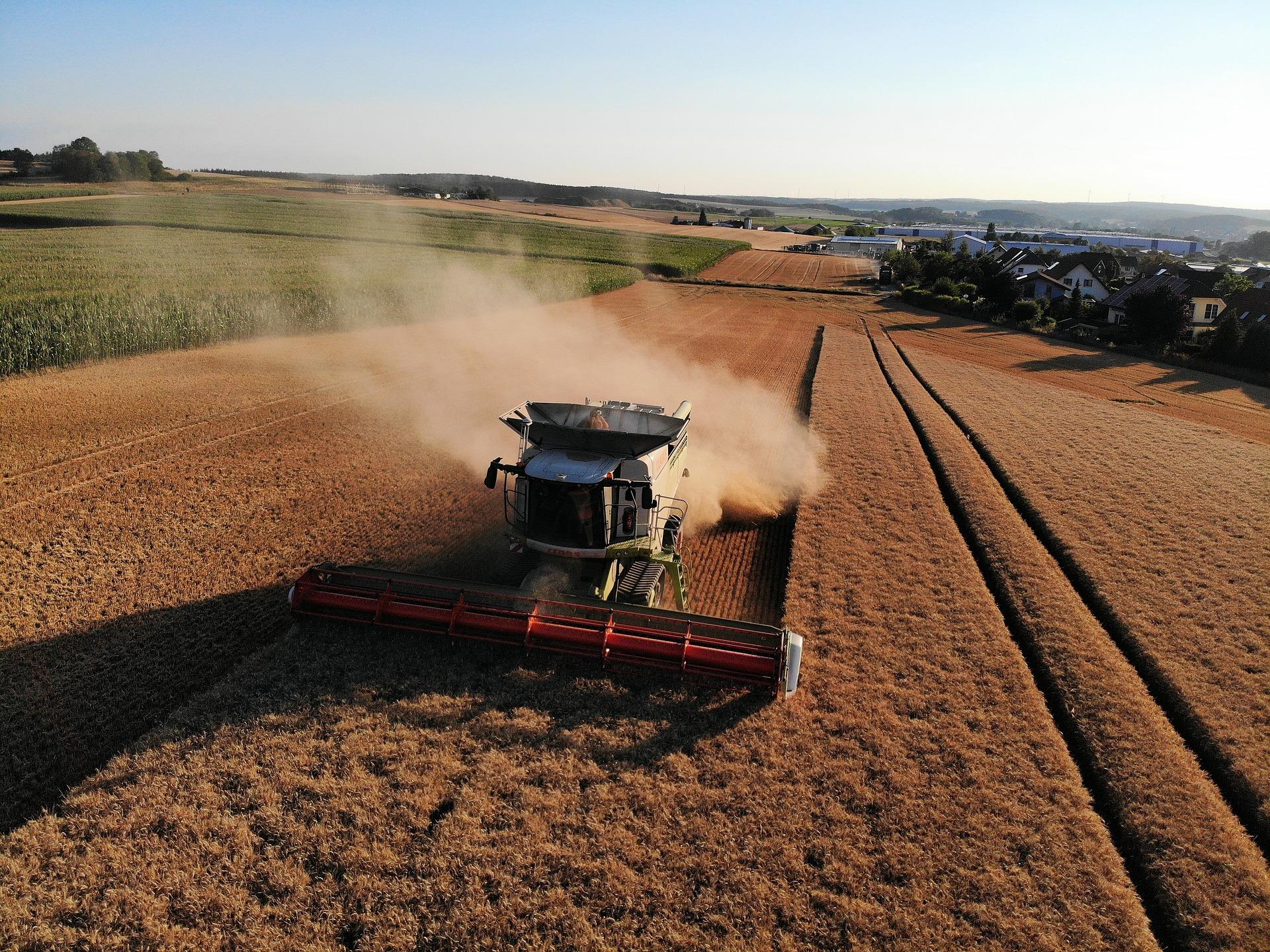 На Волині аграрії розпочали збирання зернових