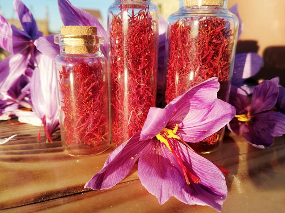 Херсонські фермери планують експортувати шафран
