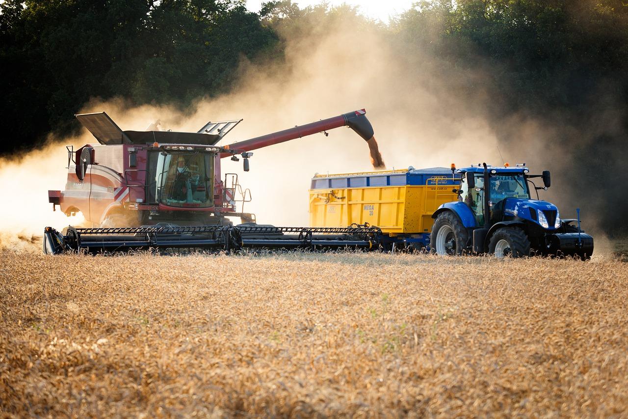 З України експортовано 10,3 млн тонн зерна нового врожаю