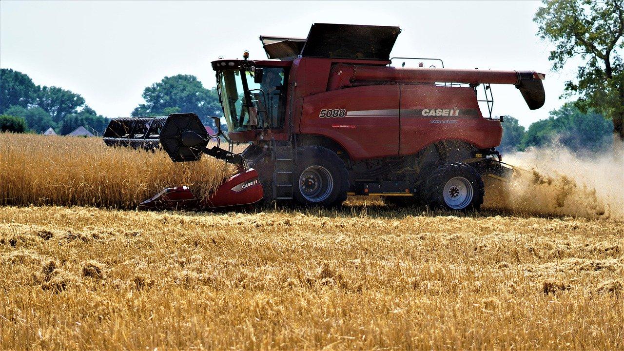 З України експортували вже 15 млн тонн зерна нового врожаю