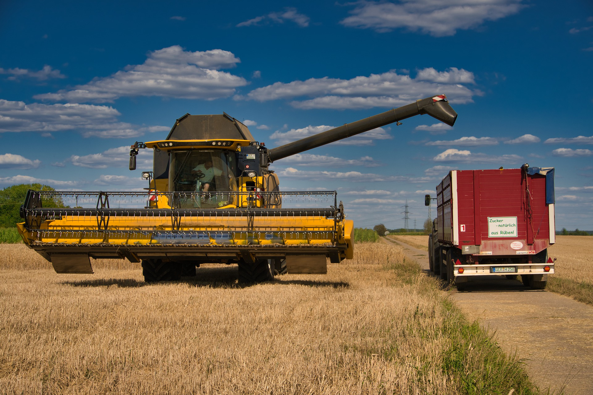З України вже експортували понад 20 млн тонн зерна