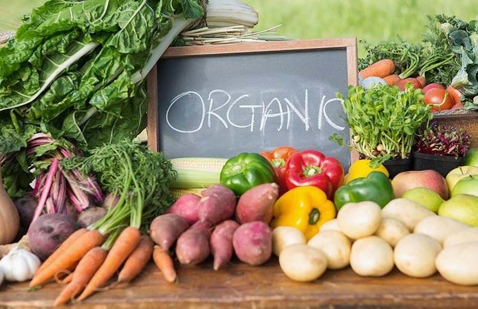 Програми з підтримки органічного виробництва діють в 15-ти областях