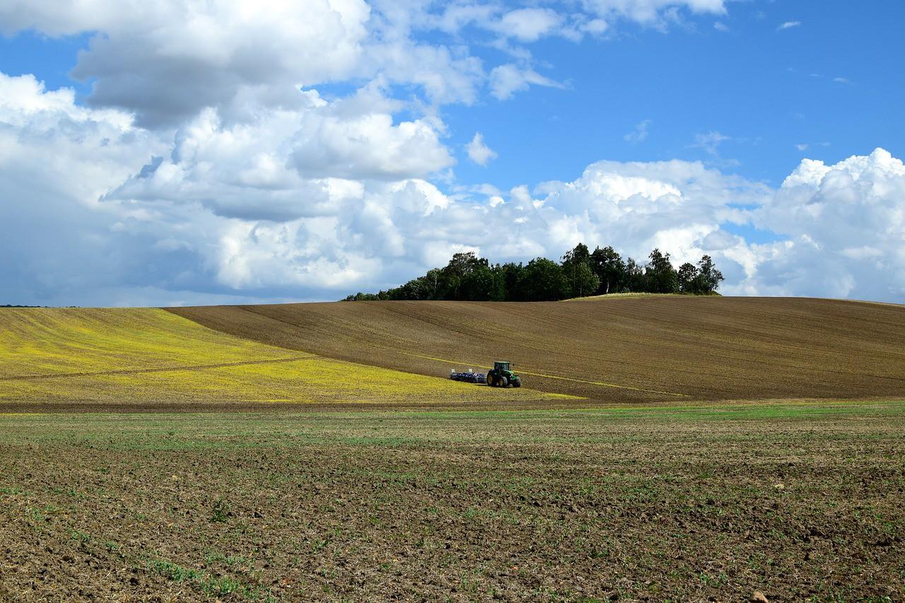 Законопроєкт із земельної децентралізації передадуть у Раду наступного тижня