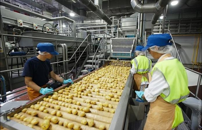 Експерт: Деякі торгівельні мережі перейдуть на продаж виключно митої картоплі