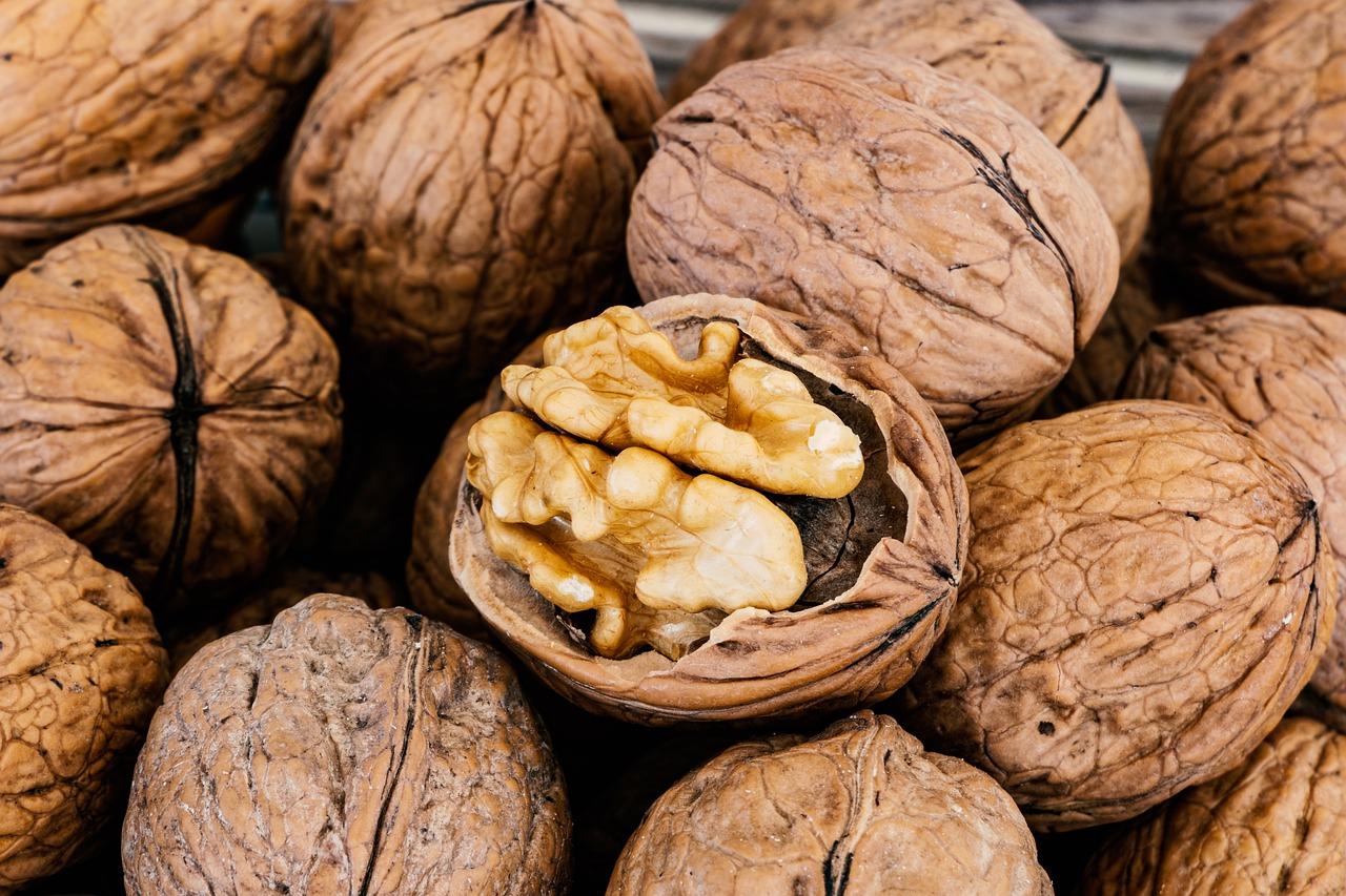 Створення кластерів експортерів допоможе розвивати український горіховий бізнес