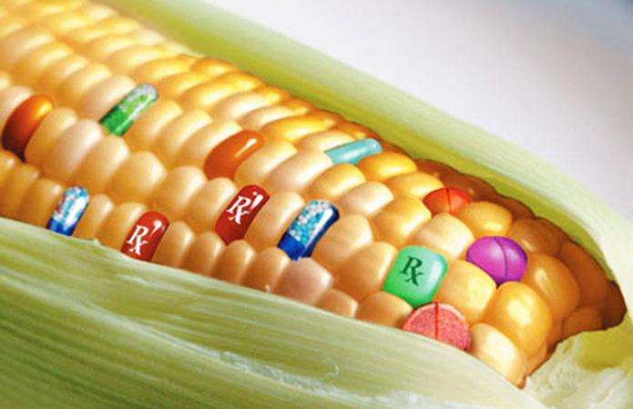 Кабмінпропонуєзбільшити штрафи за ГМО
