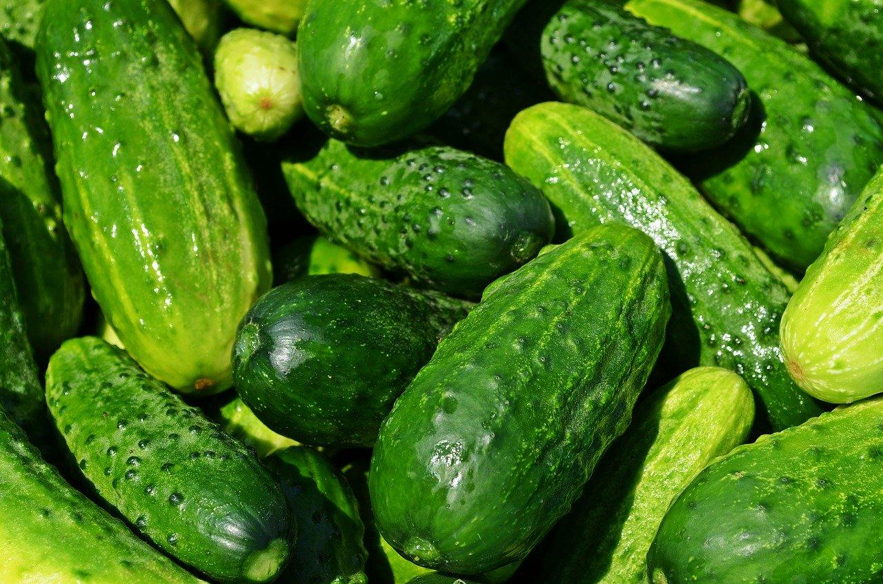 Ціни на тепличні огірки в Україні знизилися в 1,6 рази