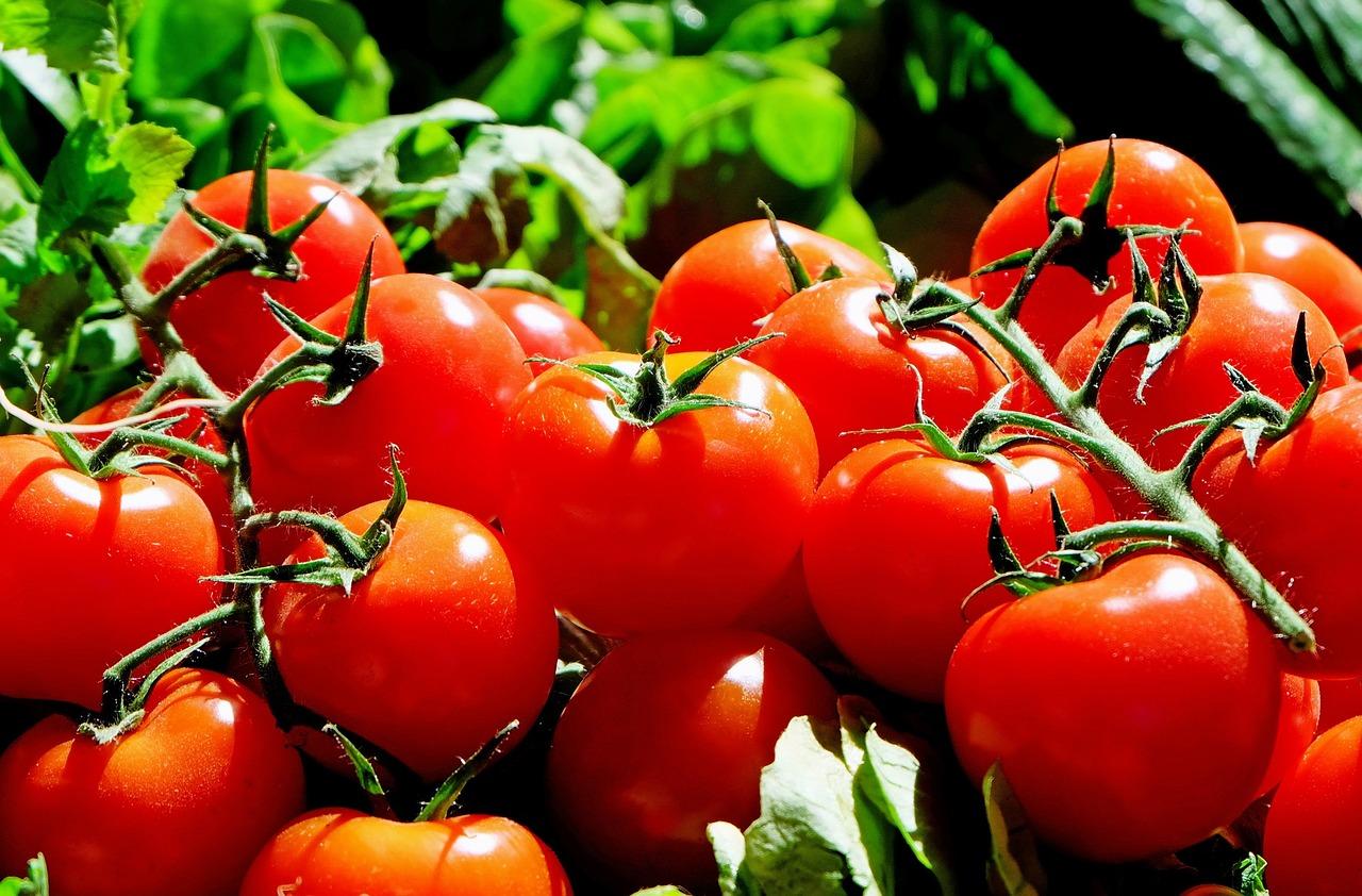 Через збільшення обсягів імпорту ціни на томати знижуються
