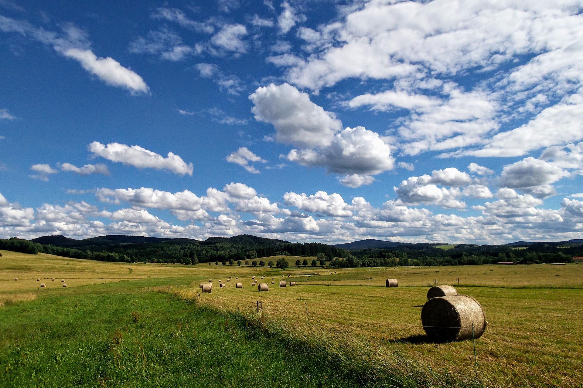 Fozzy Group має намір нарощувати земельний банк