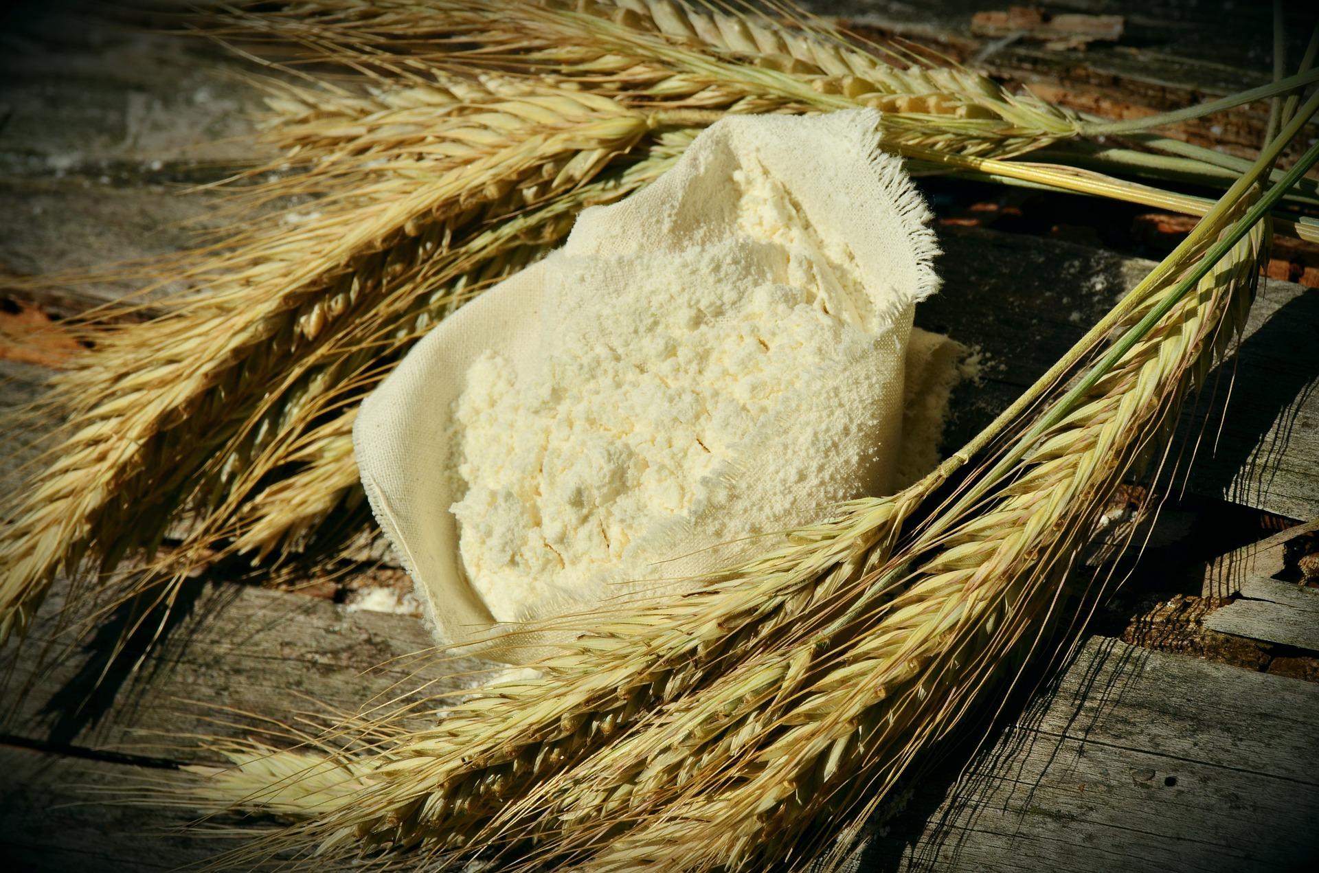 «Аграрний фонд» попередньо домовився щодо експорту борошна до країн Близького Сходу та Африки