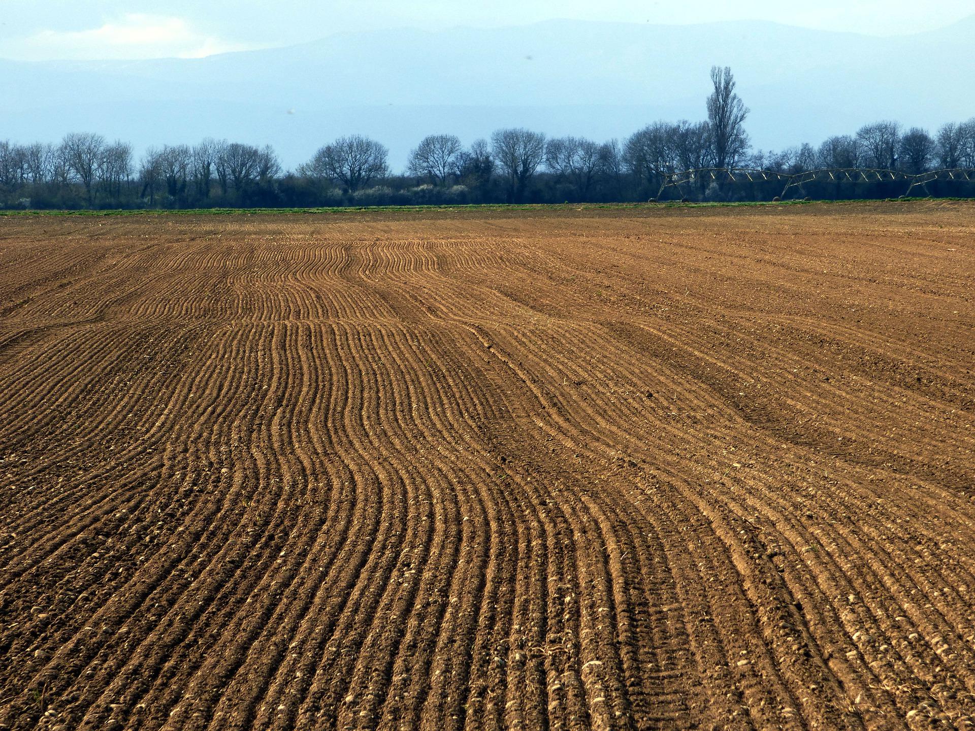 На Запоріжжі громаді повернули землю вартістю понад 65 млн гривень