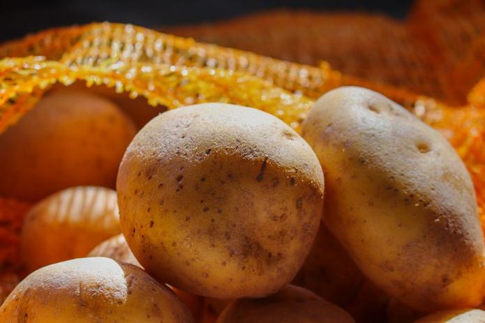 Україна зновімпортує картоплю на старті збирання врожаю