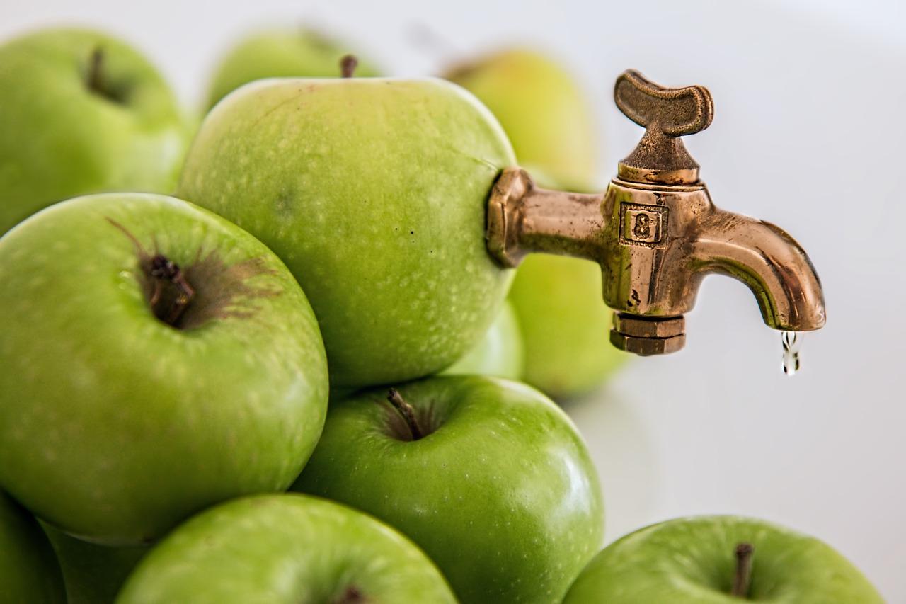 На Херсонщині відновлять завод з переробки ягід і фруктів