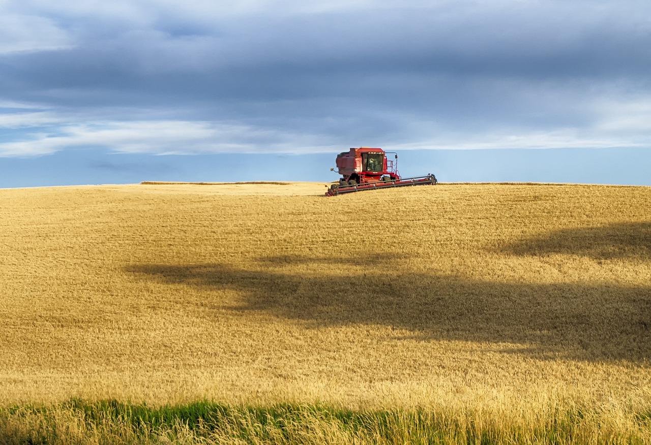 УЗА підтримує зниження ПДВ для операцій зерновими та олійними культурами