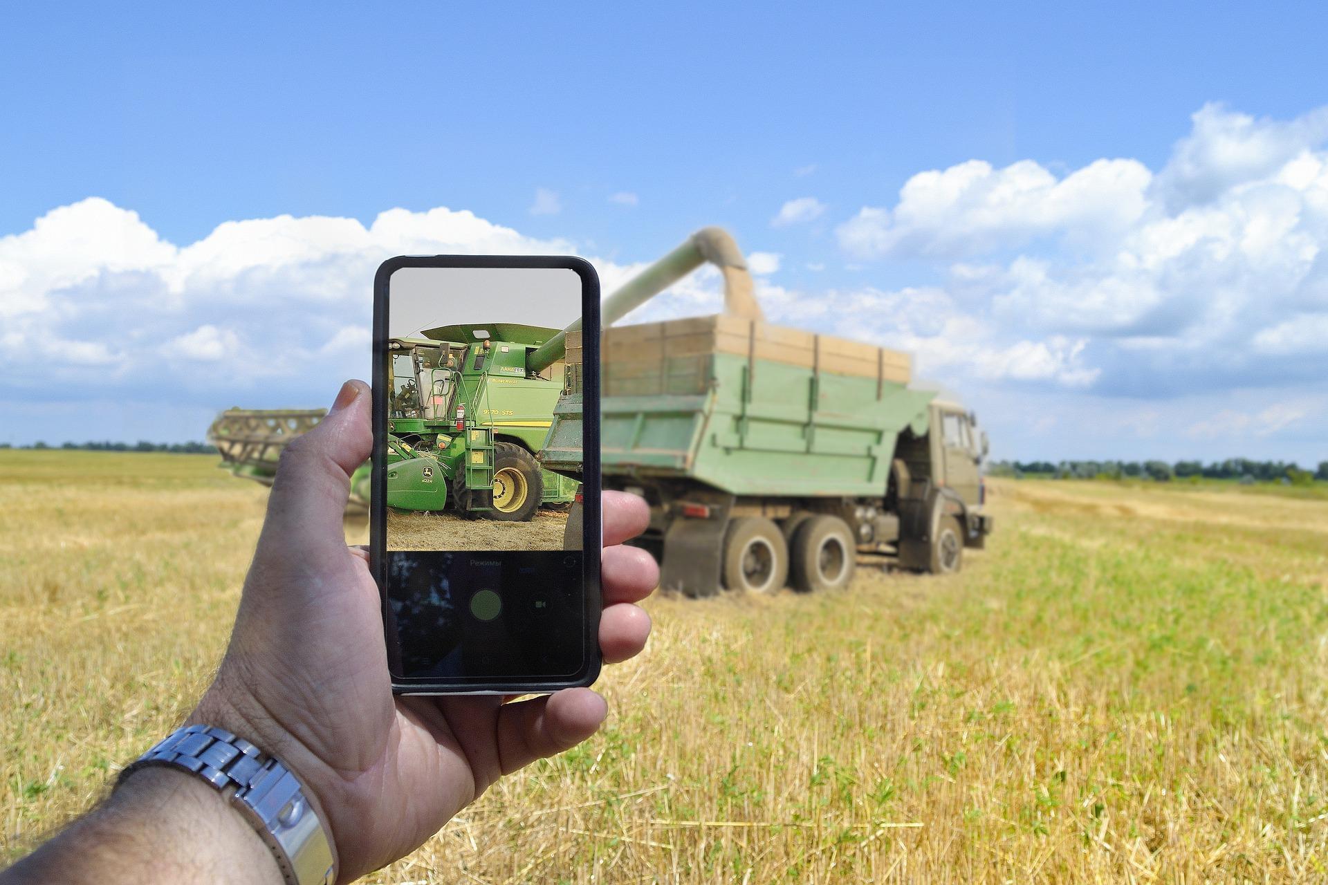 В Україні розпочали укладати угоди на зерно нового врожаю 2021 року