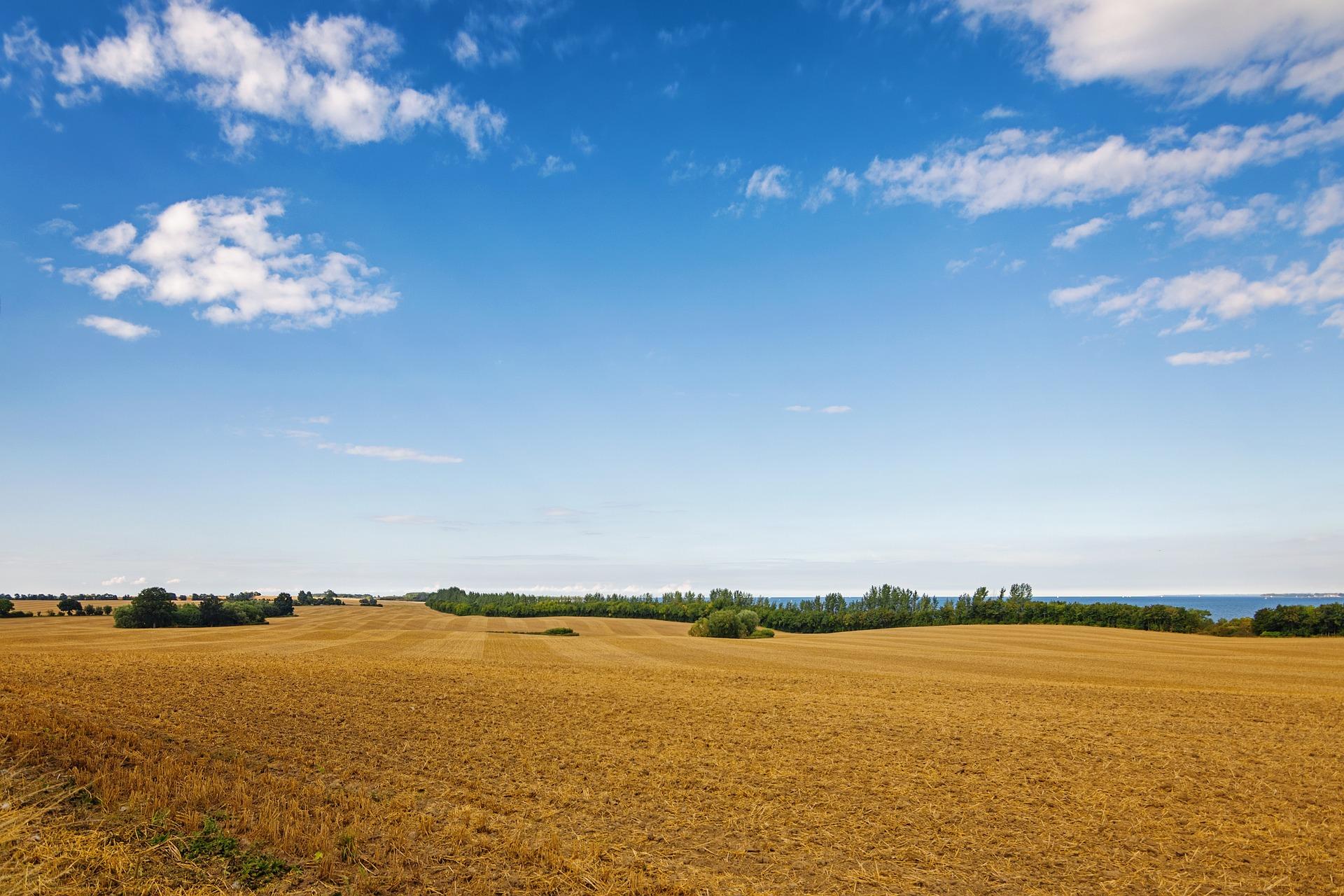 Держгеокадастр у серпні презентує результати інвентаризації земель