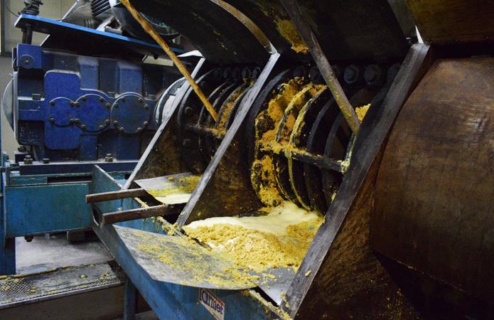 Завод на Черкасщині почав виготовляти кукурудзяну олію