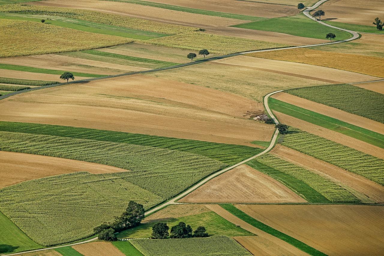 Лещенко: Завдання на 2021 рік — об'єднати реєстр прав на нерухомість та землю