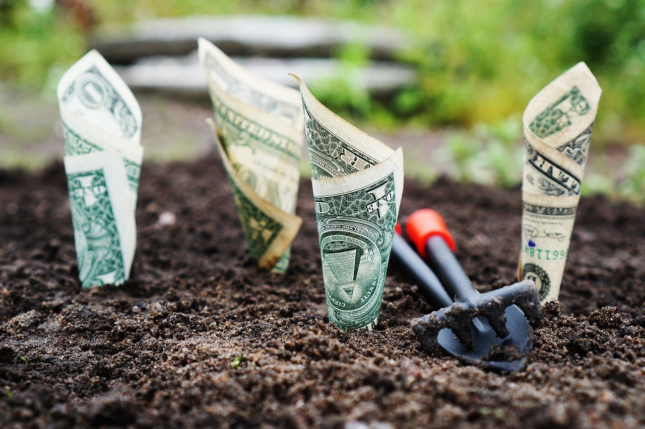Китайським підприємцям презентували інвестиційний потенціал Херсонщини в агросекторі