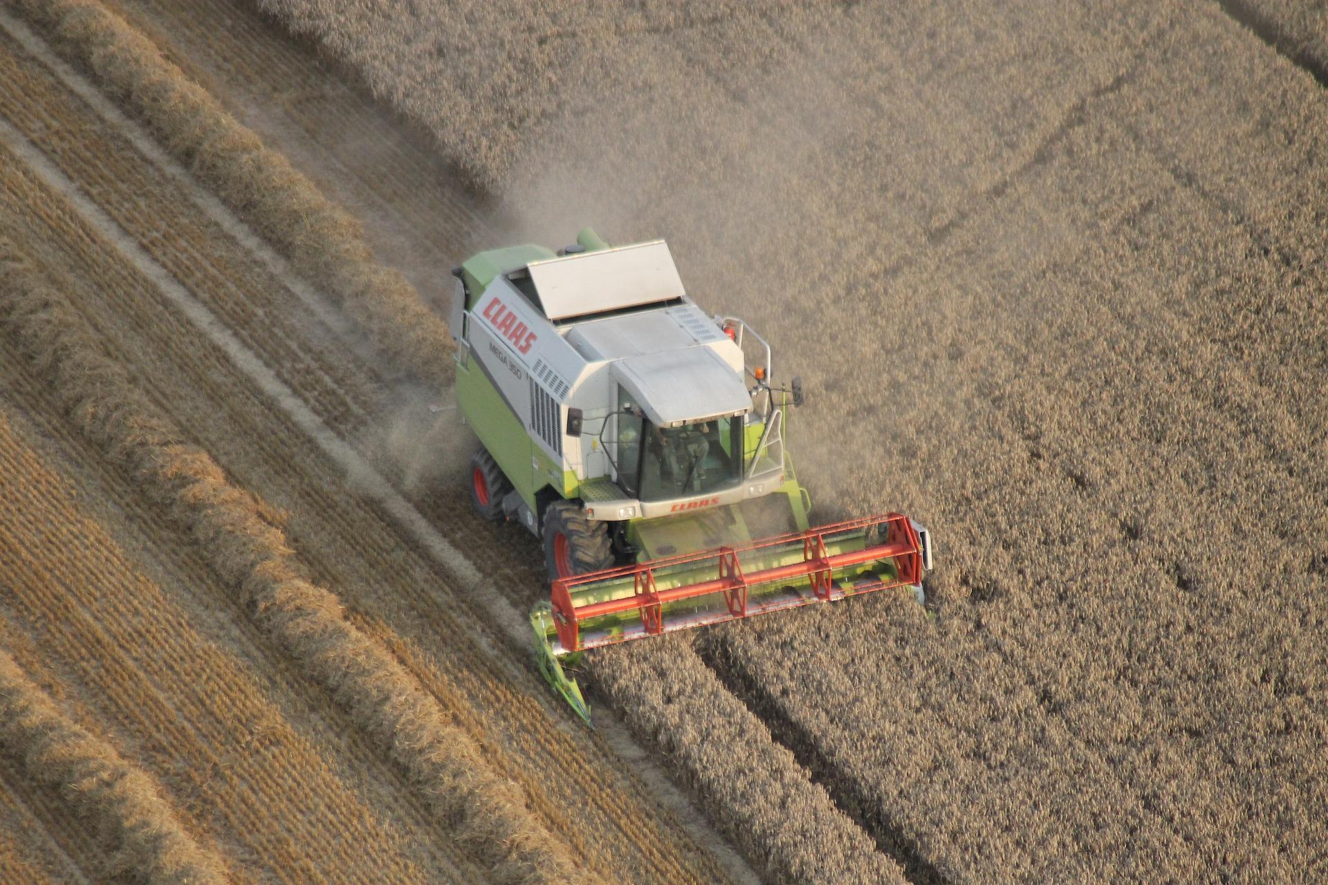 На Сумщині врожай зерна може знизитися на 30%