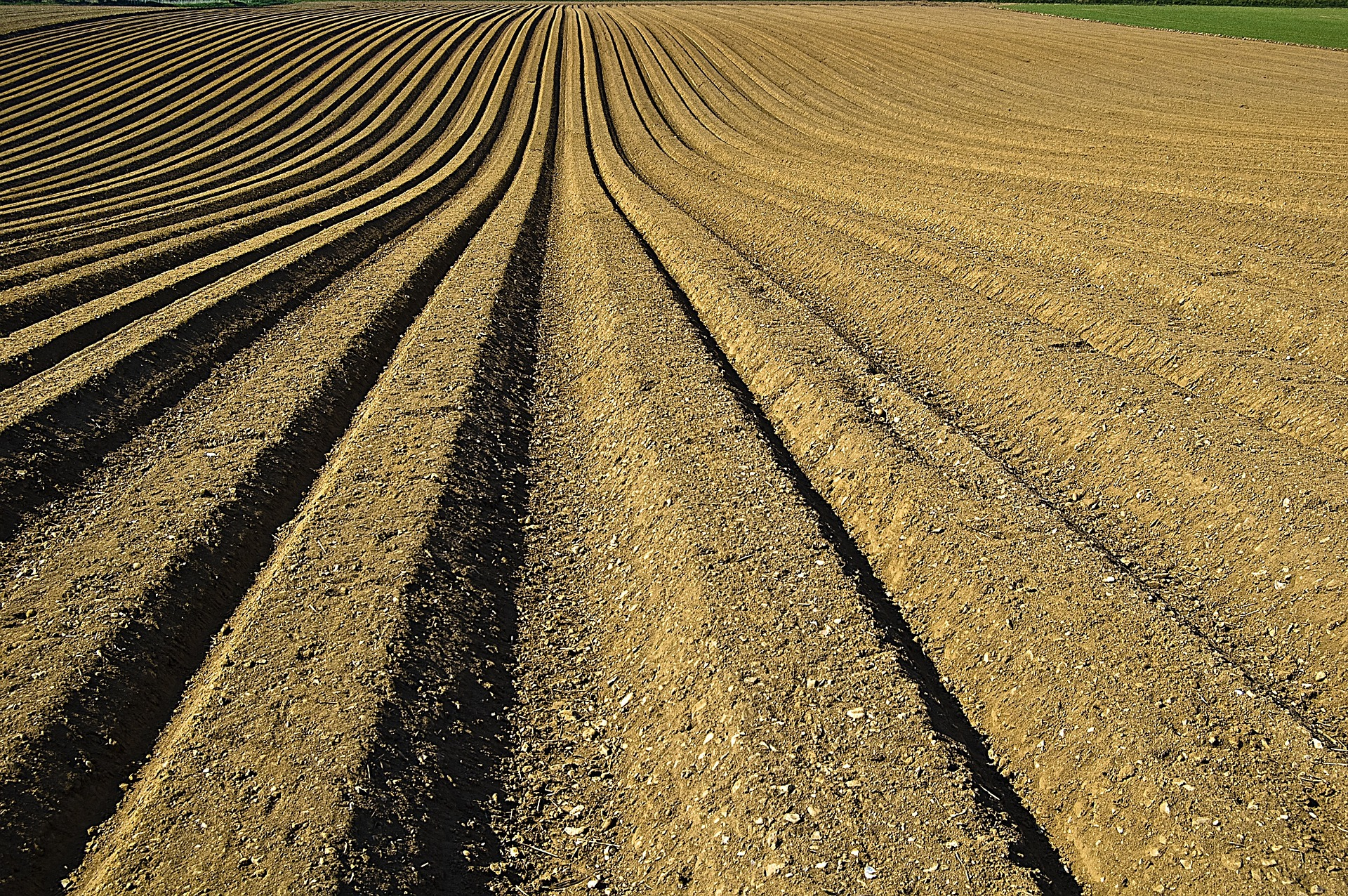 Україна має більше перспектив для точного землеробства, ніж Німеччина