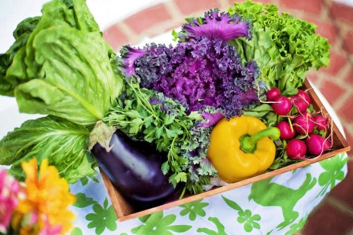Кількість органічних виробників на Львівщині зросла у півтора рази