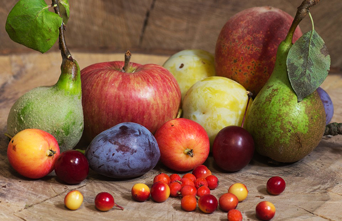 ТОП-5 плодових культур, які вигідно вирощувати на Сумщині