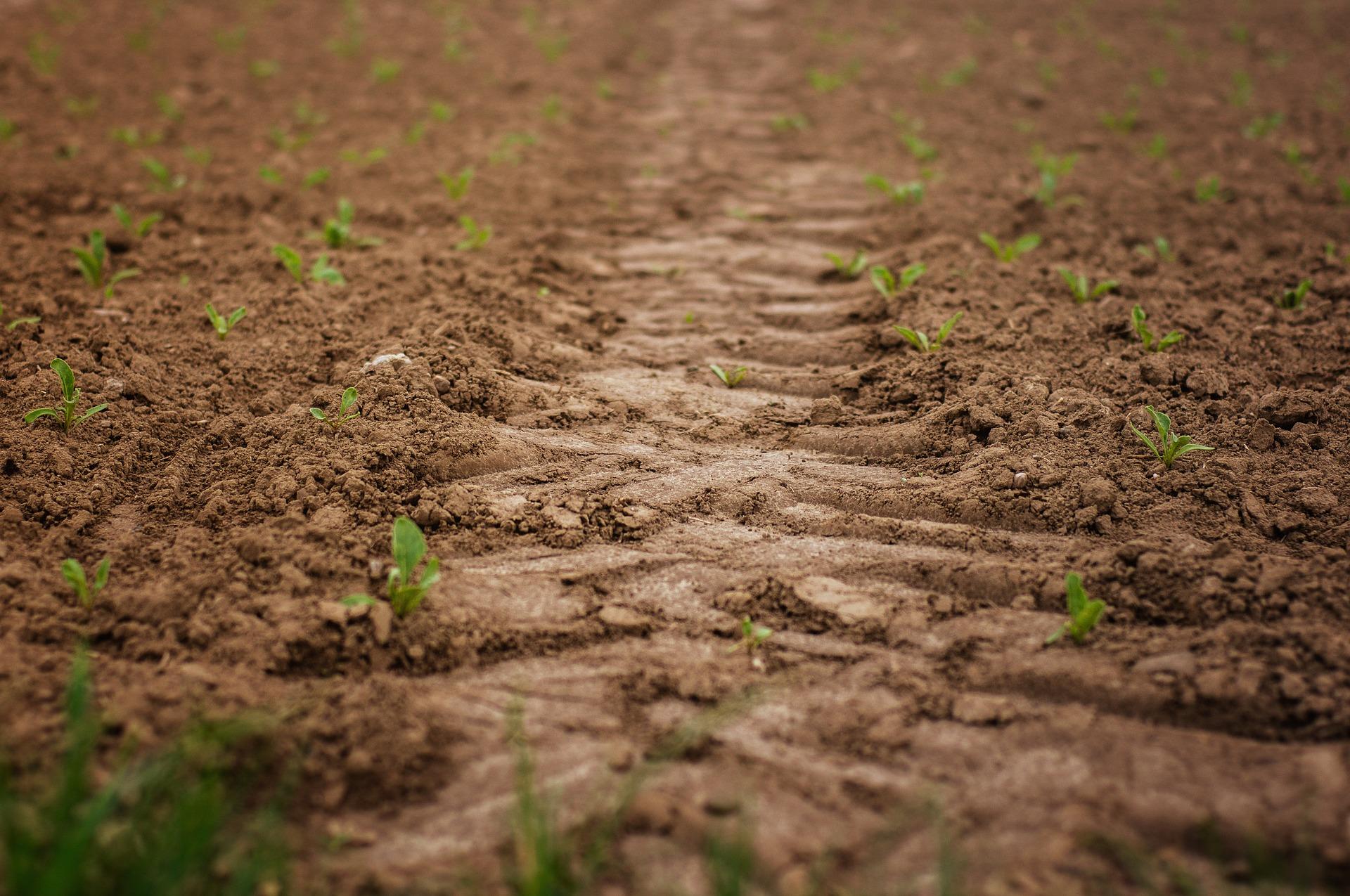 «Укргазбанк» видав перший в Україні кредит на землю