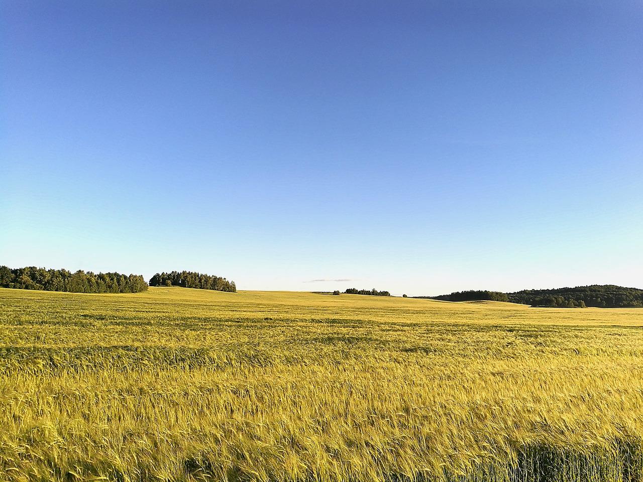 В Україні здійснили 3792 земельні операції