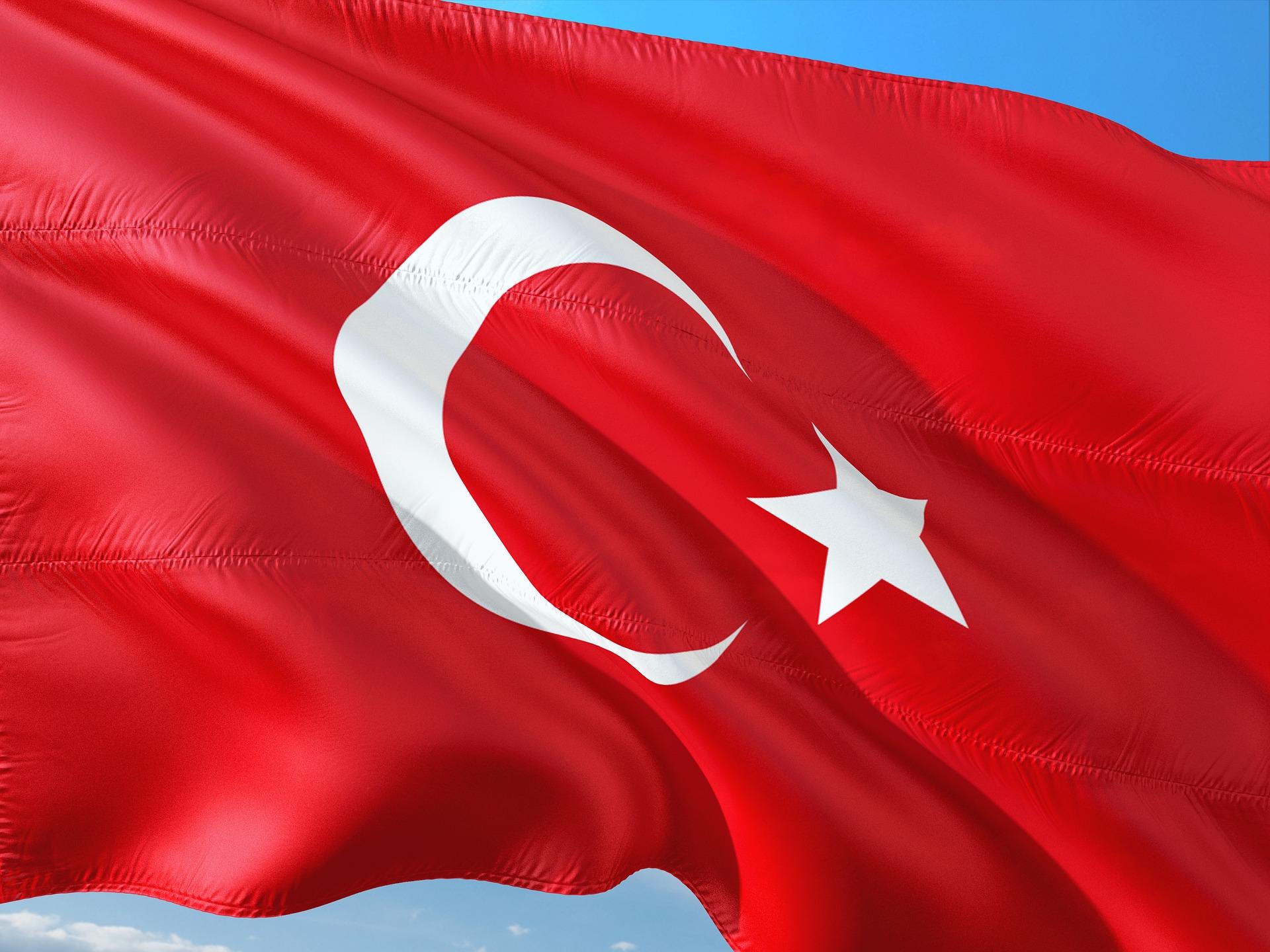 Угода про ЗВТ дозволить вдвічі збільшити товарообіг між Україною й Туреччиною — посол