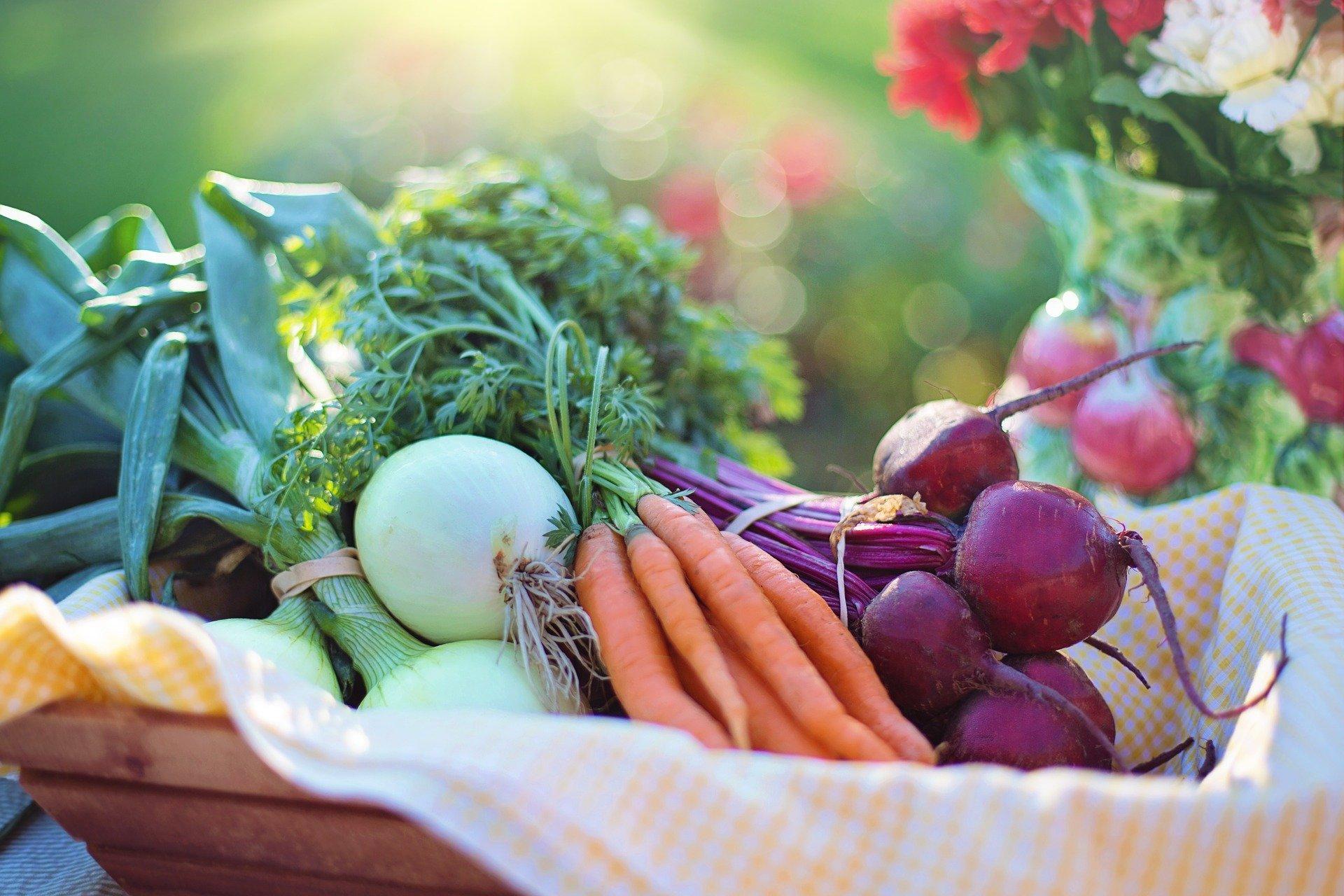 Cезон реалізації минулорічних овочів завершується рекордно високими цінами