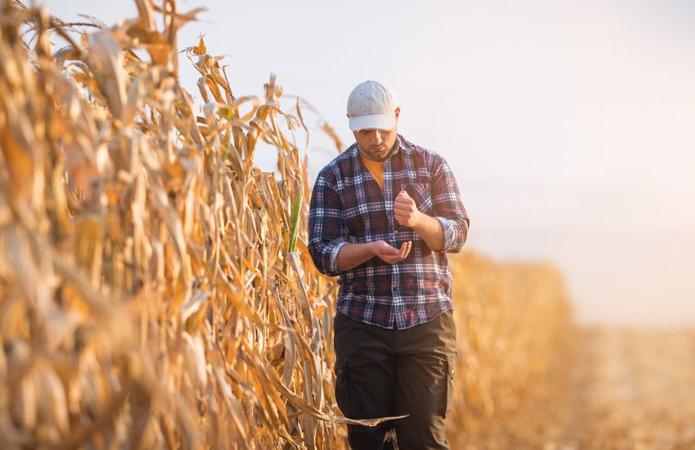 Думка: Україна стала монстром в очах європейських фермерів
