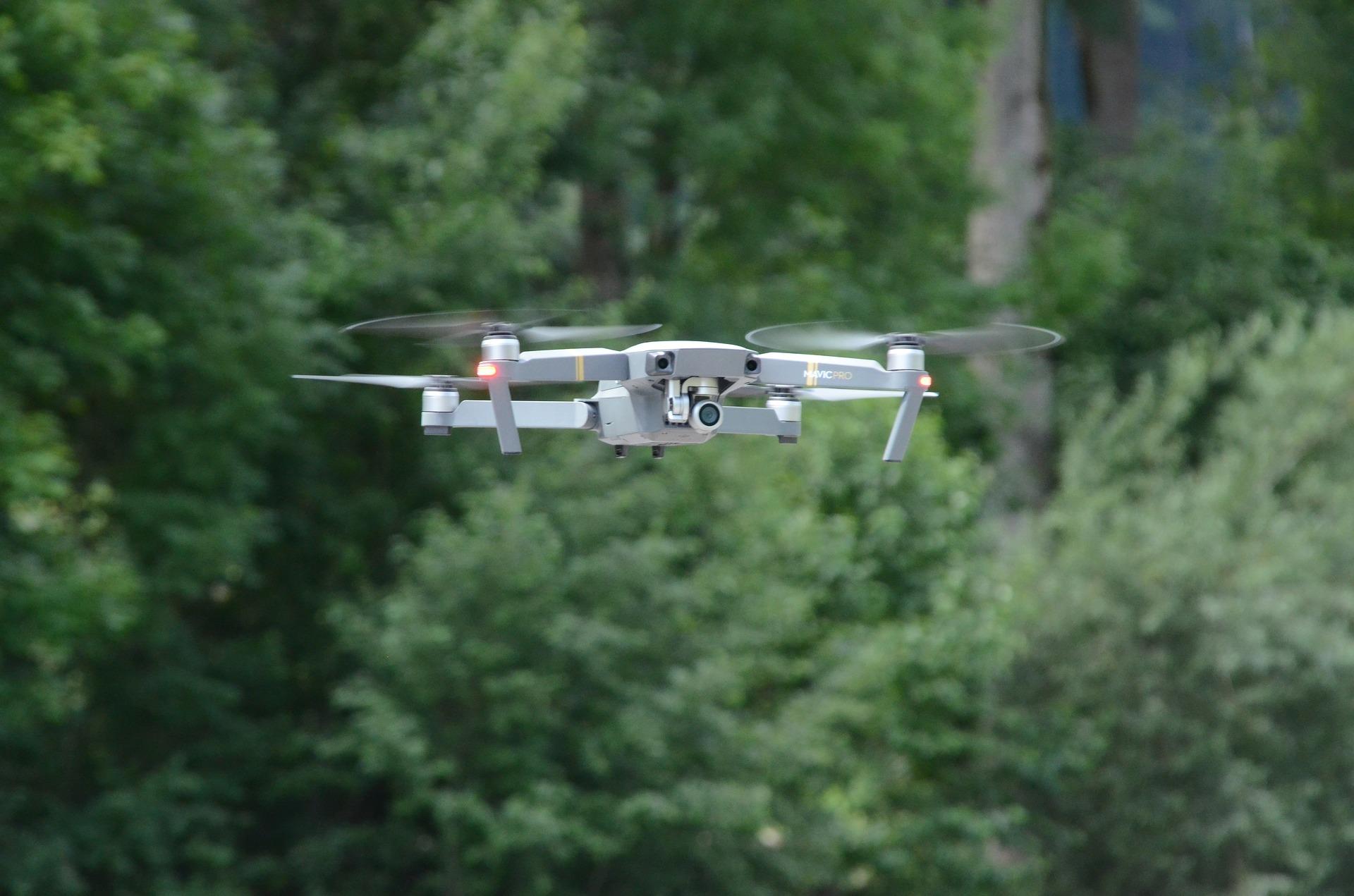 «Укрсадпром» запилював фундук за допомогою дронів