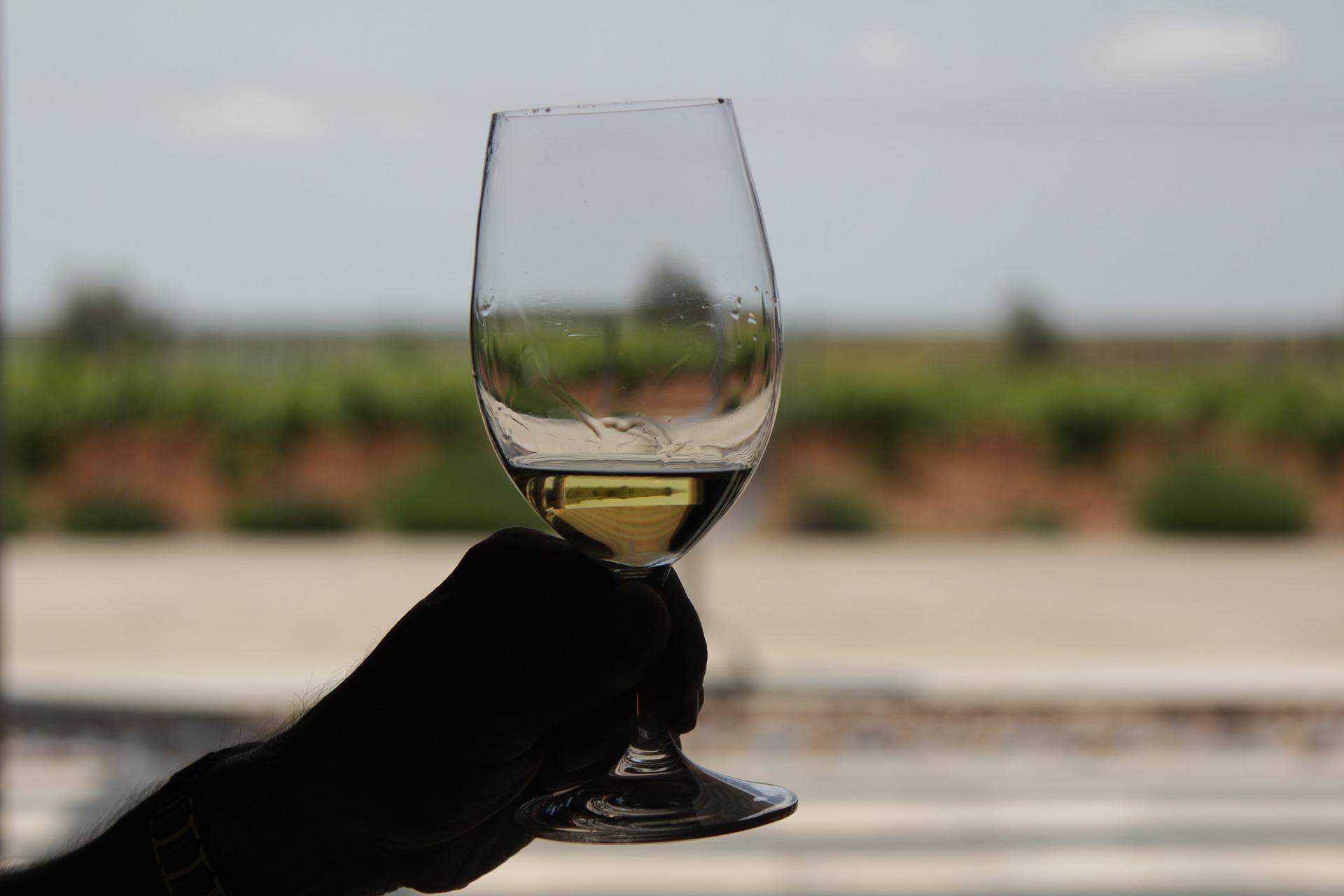 Виноробня Château Edem отримала ліцензію на виробництво алкогольних напоїв