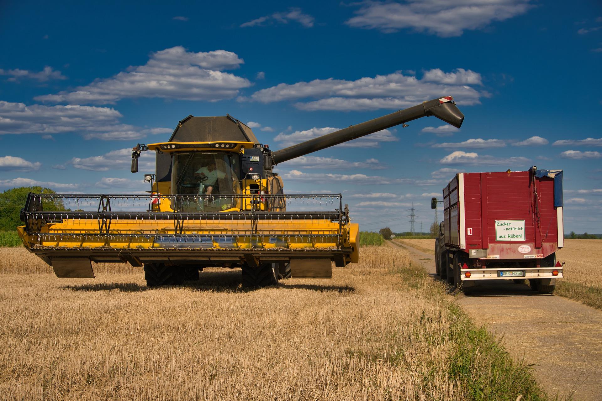 З України експортували 16,4 млн тонн пшениці