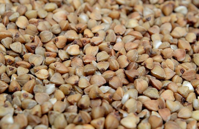 На Житомирщині отримали рекордний врожай гречки