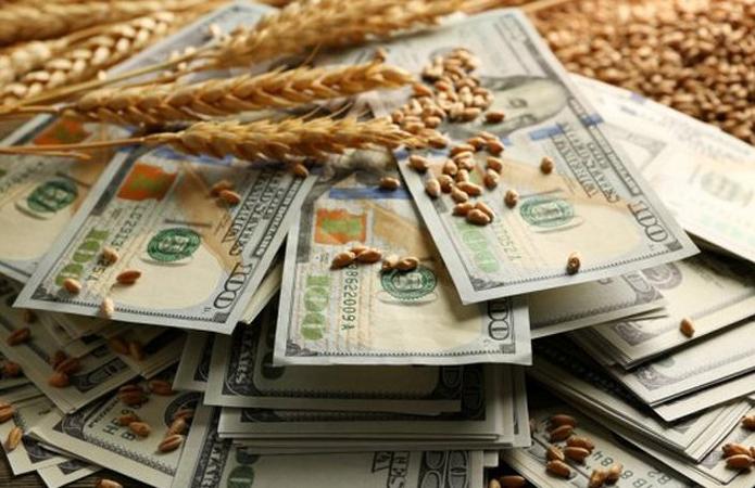 Експерт: Фінансові інструменти дозволяють аграріям отримувати більшу вигоду