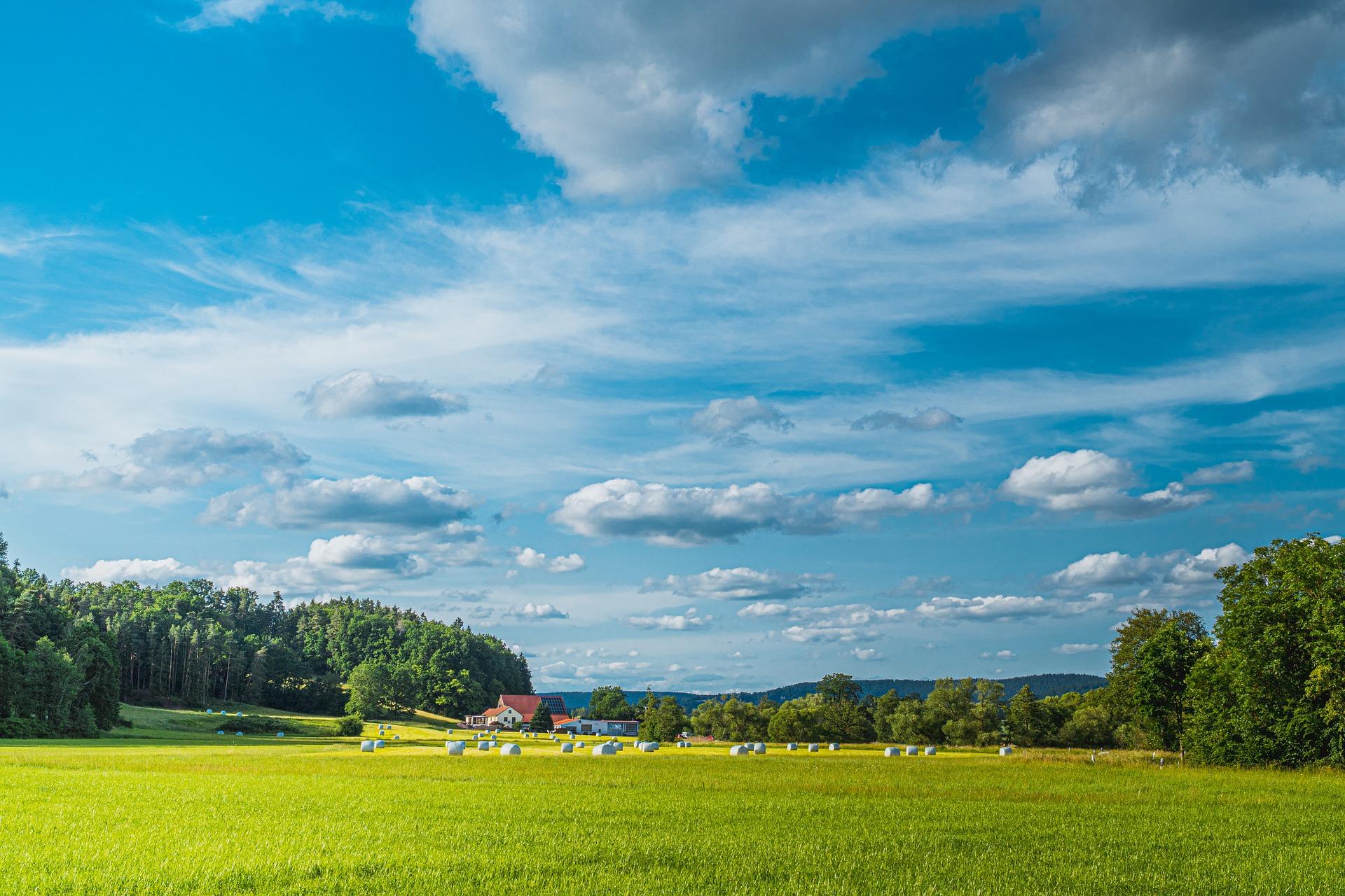 Громадам Харківщини передадуть у власність майже 8,5 тис. гектарів земель сільгосппризначення