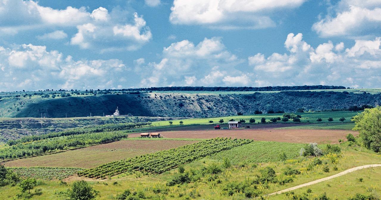 ВРУ може прийняти закон щодо змін в аграрних розписках