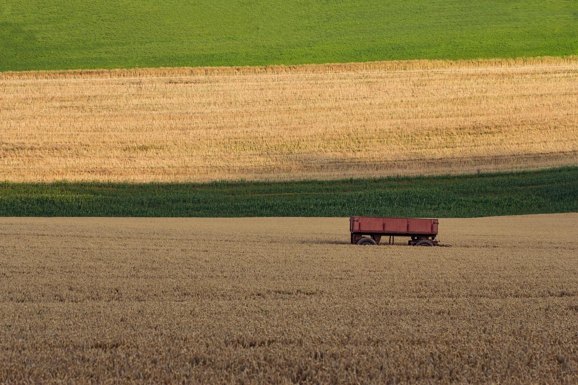 Вартість сільськогосподарської землі становитиме 50-60 тис. грн за гектар — Висоцький