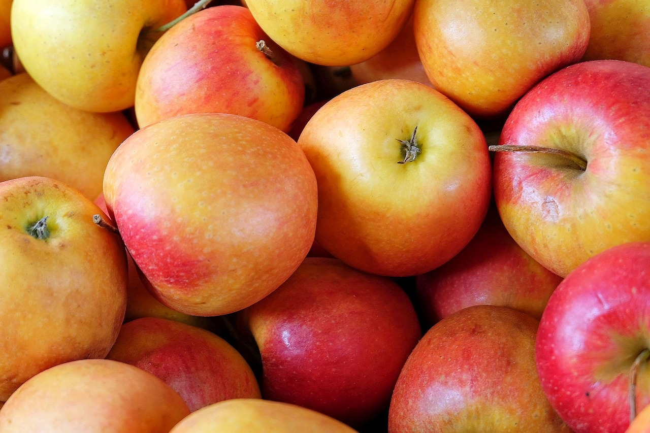 ФГ «Гадз» висадить 20 гектарів яблунь з протиградовими конструкціями
