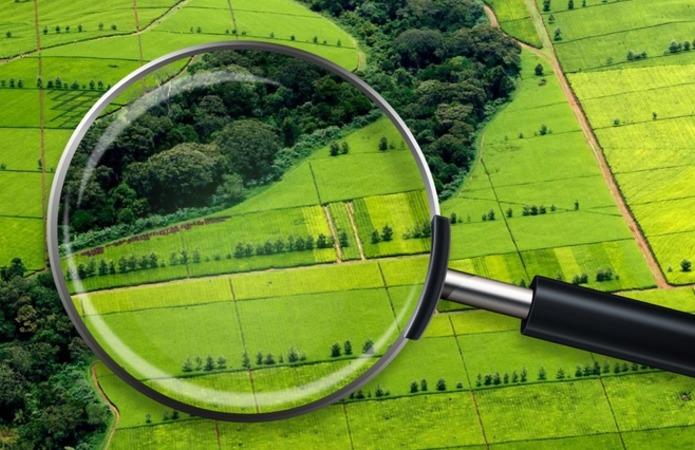 Експерт: Найцікавіші землі— у «кукурудзяному поясі»